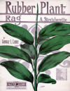 Rubber Plant Rag: A Stretcherette